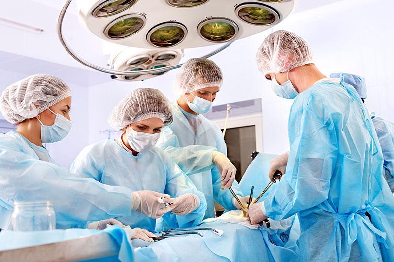 """Відчуй себе студентом-медиком: онлайн-курс """"Шлях лікаря"""" створили в Івано-Франківському національному медичному університеті 1"""