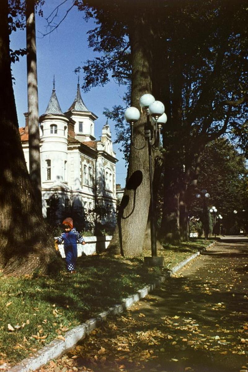 Franyk 1980 (30)