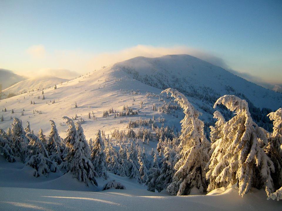 Зимова казка: як виглядають засніжені схили Горган (фоторепортаж)