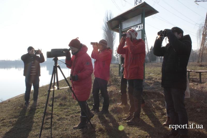 Туристи, біноклі, птахи. Як на Бурштинському водосховищі розвивають бьордвотчинг (фото)