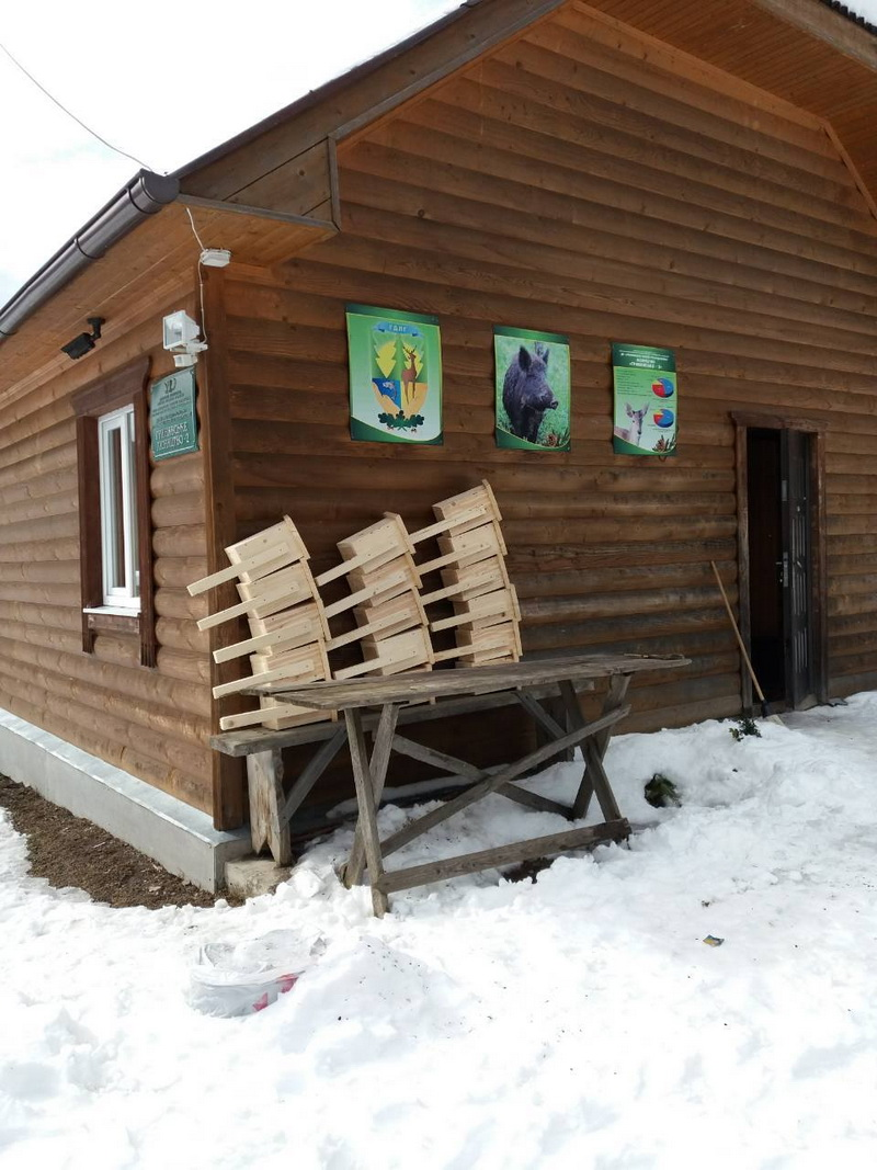 На Прикарпатті лісівники зробили 120 шпаківень – чекають птахів (фото)