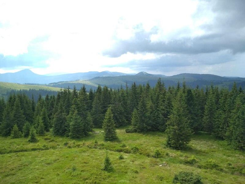 Верховинський Нацпарк розширюють – лісгосп лякає гуцулів заборонами