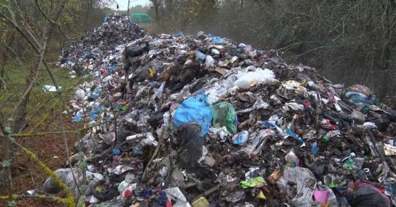 У селі на Рожнятівщині посеред поля влаштували стихійне сміттєзвалище (відеосюжет)