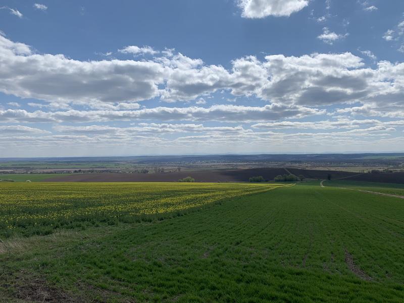 Як сьогодні живеться аграріям Франківщини і що вони думають про ринок землі